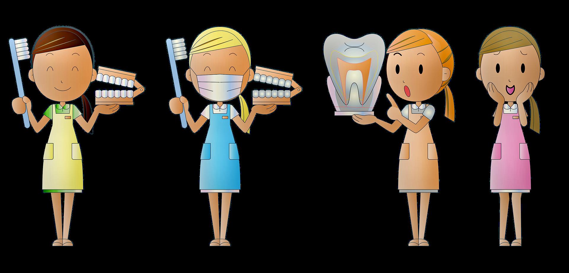 Zubař (2)