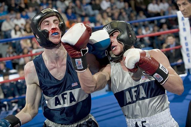boxeři při zápase